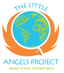 The Little Angel Project